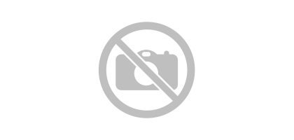 "1/4"" Набор головок с трещоткой в пластиковом держателе 14пр.(12гр.)(4-14мм) Forsage F-014-9 MSA"